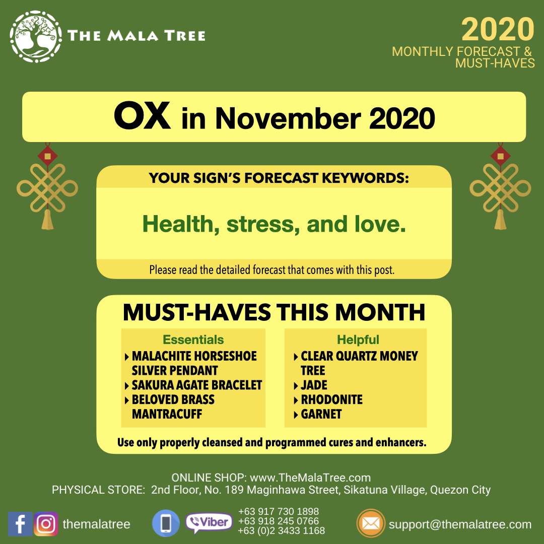 2020-monthly-forecast-template-november-2020-copy.002.jpeg