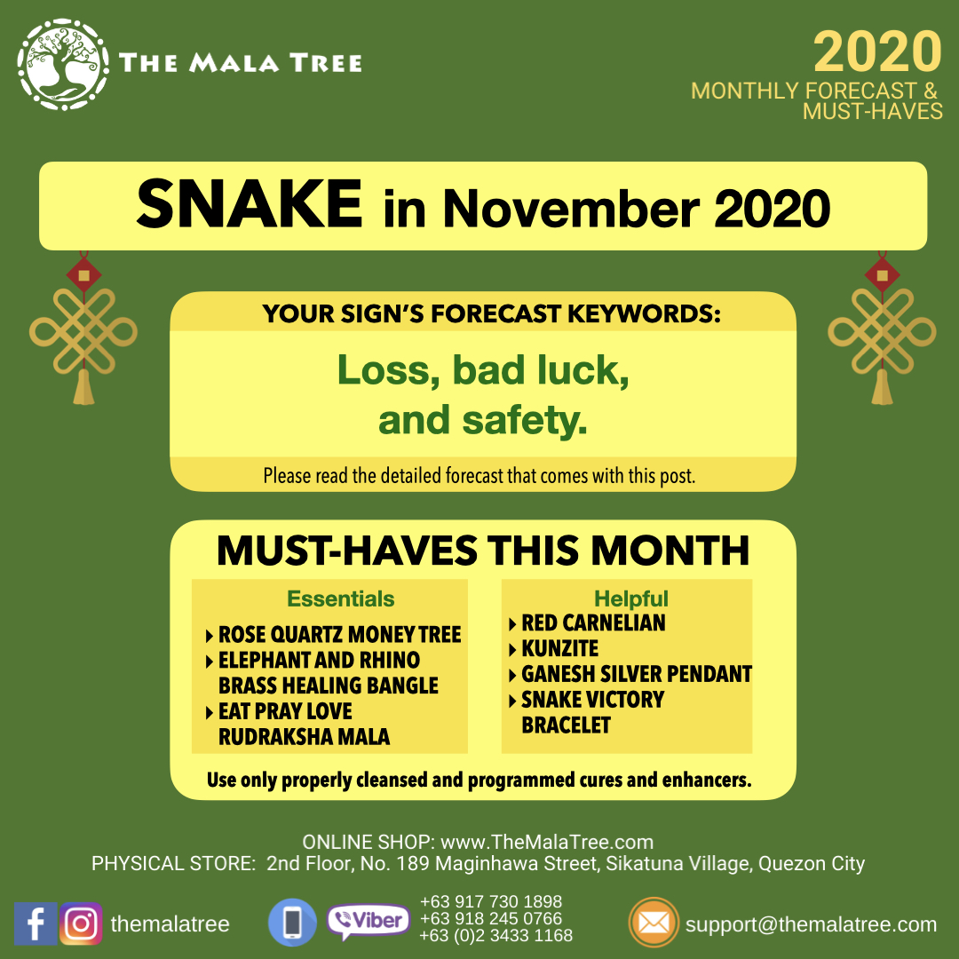 2020-monthly-forecast-template-november-2020-copy.006.jpeg