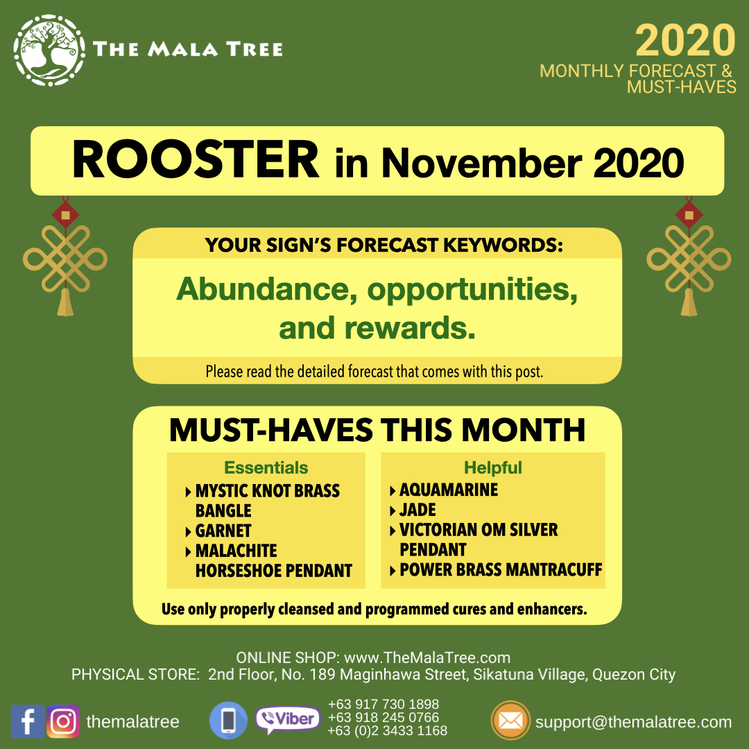 2020-monthly-forecast-template-november-2020-copy.010.jpeg