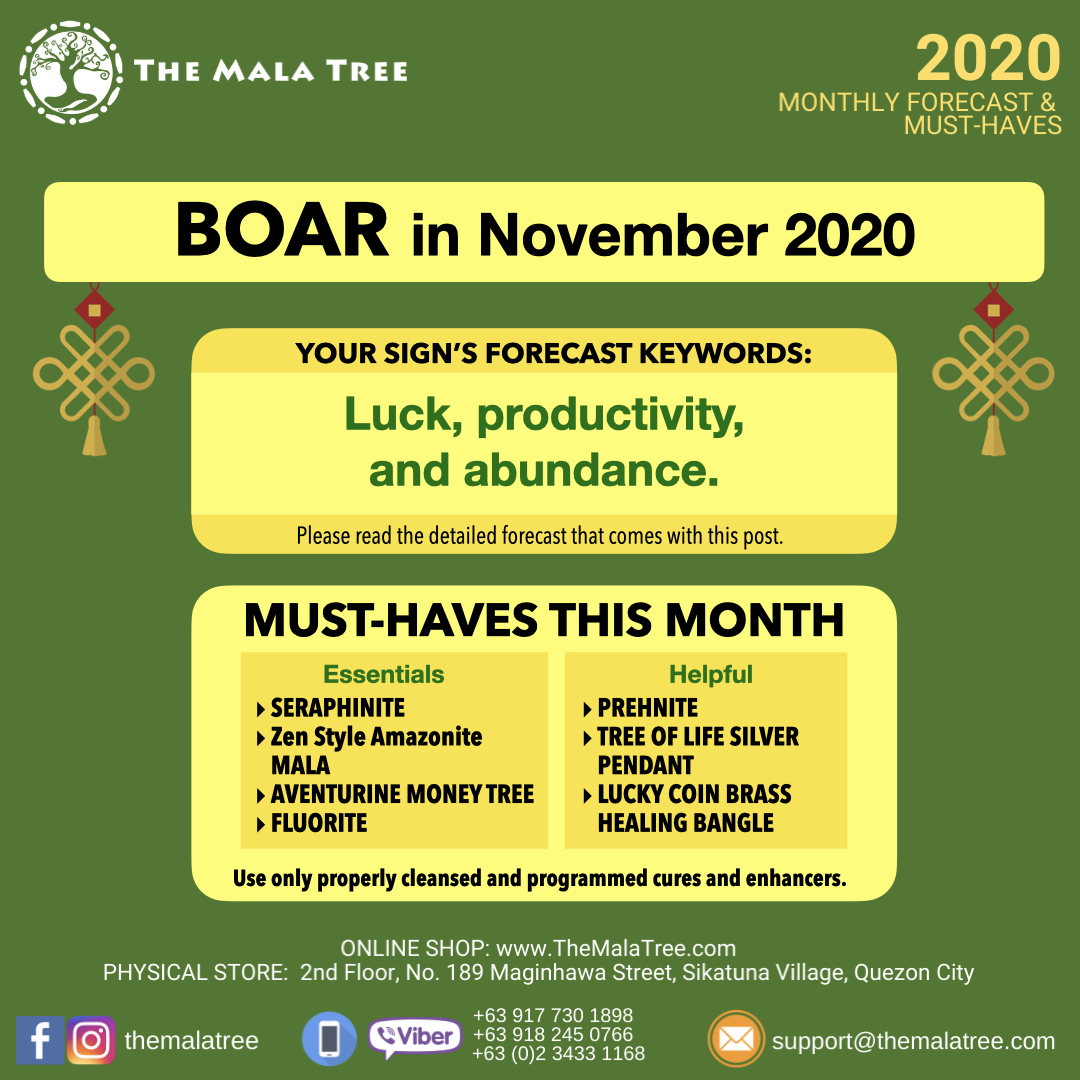 2020-monthly-forecast-template-november-2020-copy.012.jpeg