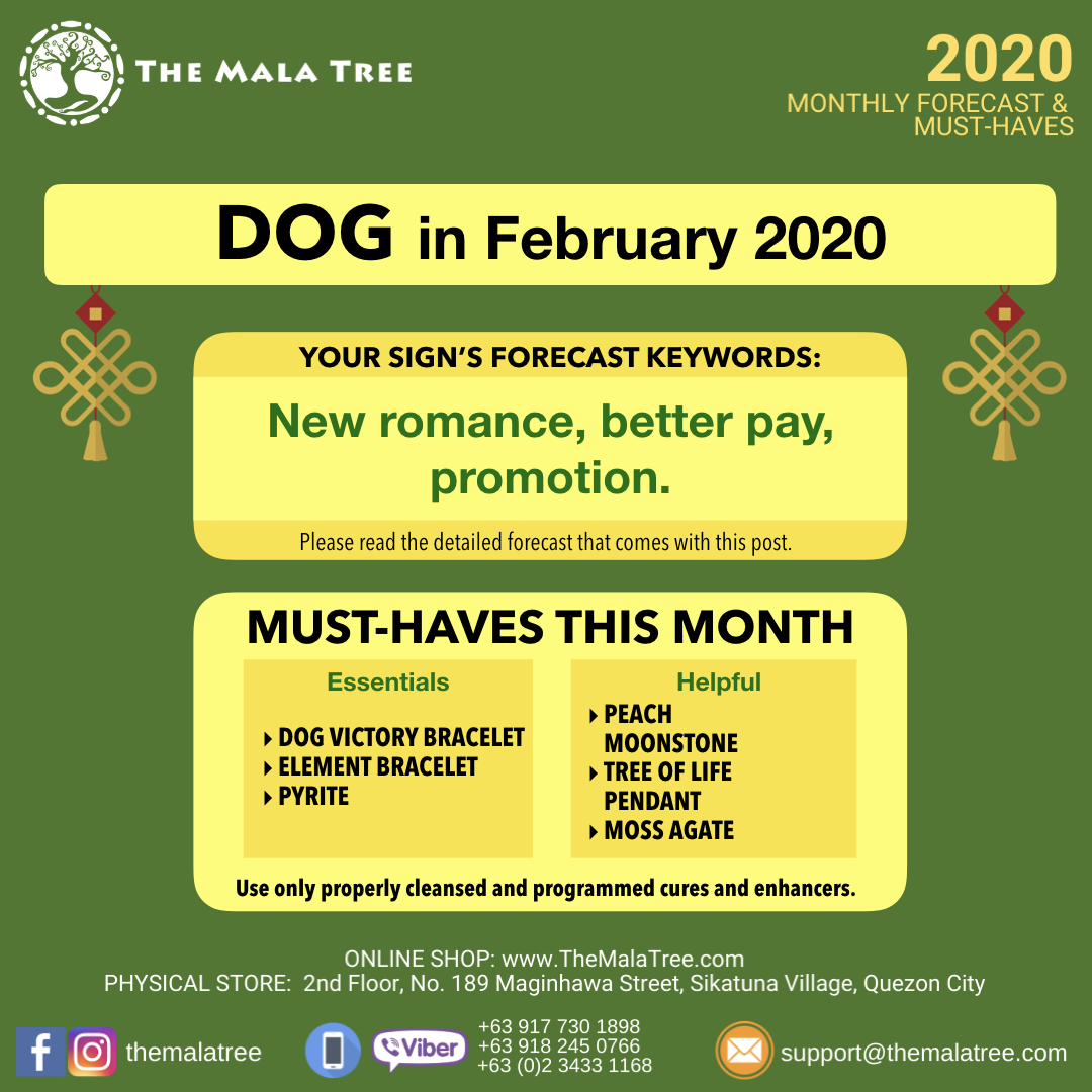 february-2020-monthly-forecast-gfx.011.png