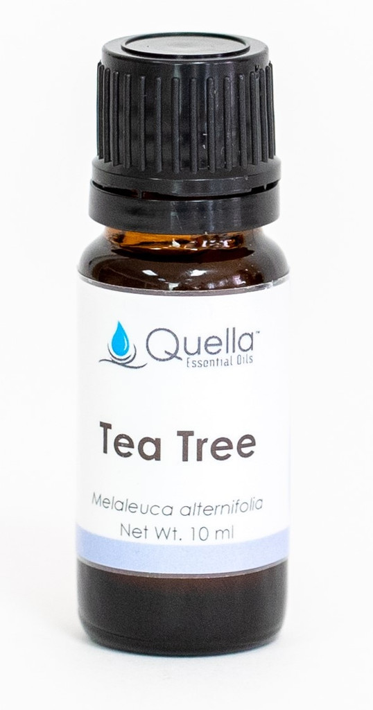 Tea Tree