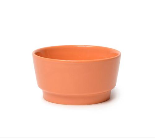 Glossy Ceramic Coral Bowl