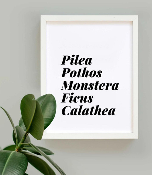 Plant Lover List Art Print