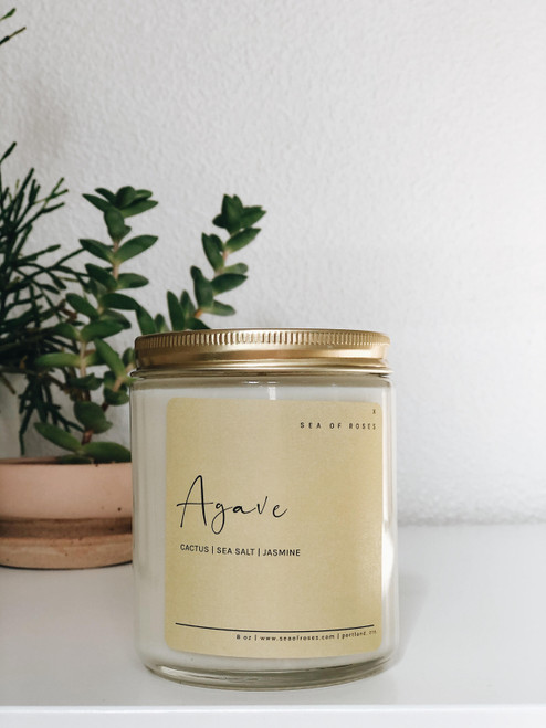 Agave Scent Coconut + Soy Wax Candle
