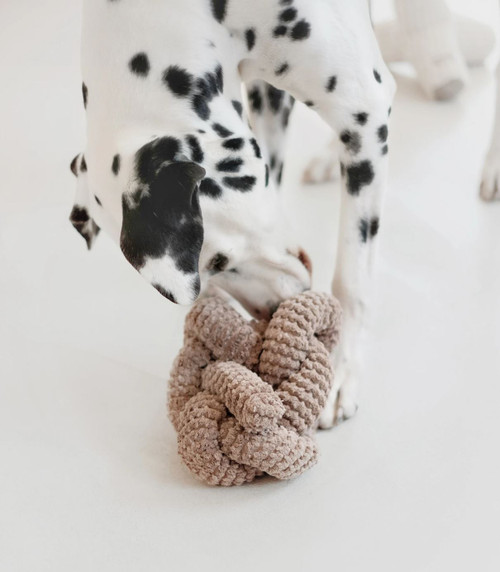 Nou Taupe Squeaker Dog Toy