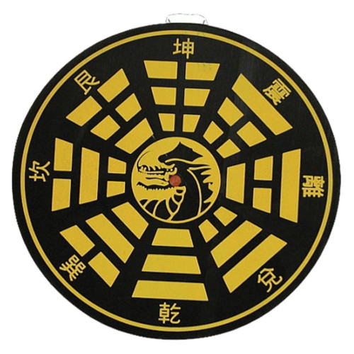 Bullseye Dragon Target Throwing Board