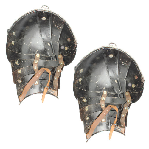 Medieval German Gothic 16g Armor Pauldron Set