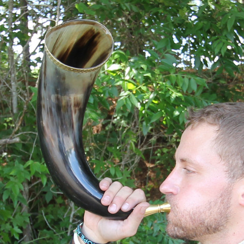 Cow Horn with Brass Rim Trumpet