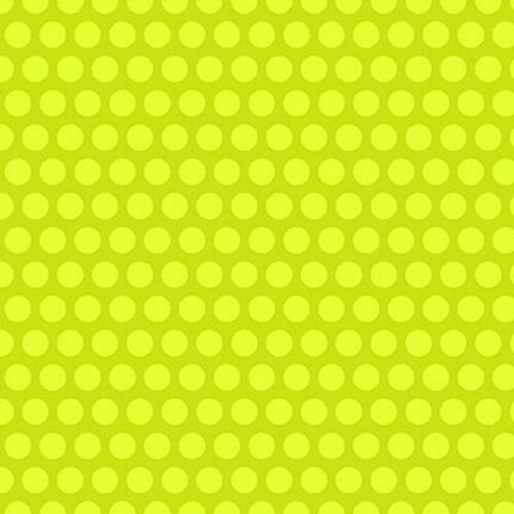 Studio E - Black & White w/Touch of Bright - Polka Dots, Lime
