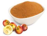 Camu Camu Powder, 3.5 oz, Organic, Raw - Bowl