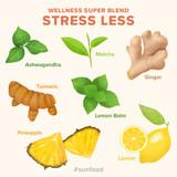 Wellness Super Blend Stress Less - Ingredients