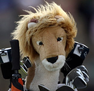 Daphne's Headcovers - Lion