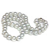 Akoya Pearl  Necklace 8 - 8.5 MM AAA Blue Pistachio