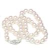 Akoya Pearl Necklace  8 - 7.5 MM AAA
