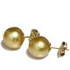 South Sea Pearl Stud Earrings 15 MM Golden AAA Flawless