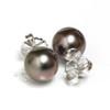 Tahitian Pearl Stud Earrings 10 MM Aubergine AAA Flawless