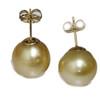 South Sea Pearl Stud Earrings 15 MM Light Golden AAA-