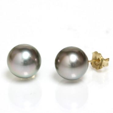 Tahitian Pearl Stud Earrings 10 MM Gray copper  AAA Flawless