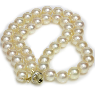 Akoya Pearl Necklace 9 - 9.5 MM AAA Champagne