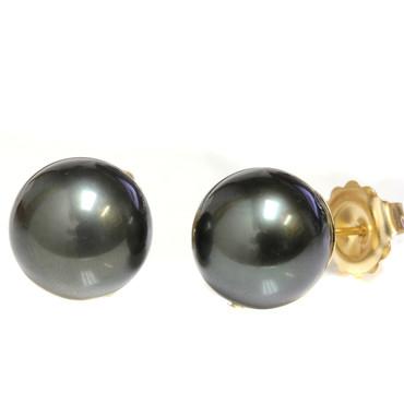 Tahitian Pearl Stud Earrings 14 MM Black AAA