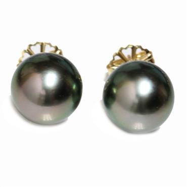 Tahitian Pearl Stud Earrings 13.5 MM Bright Green AAA-
