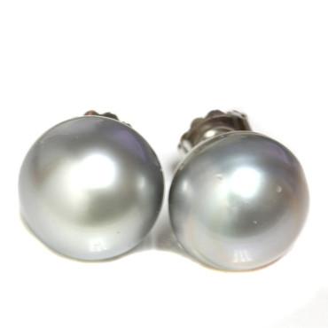 Tahitian Pearl Stud Earrings 16.5MM Silver Blue AAA-
