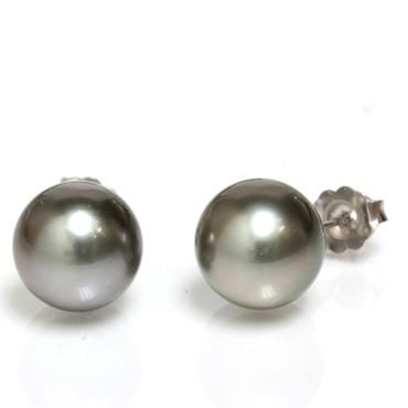 Tahitian Pearl Stud Earrings 10 MM Black  AAA Flawless