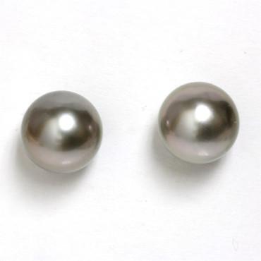 Tahitian Pearl Stud Earrings 9.5 MM olive Wine  AAA Flawless