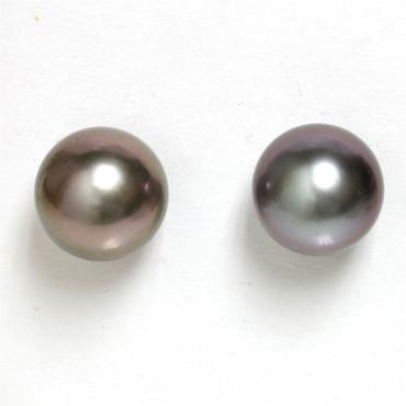Tahitian Pearl Stud Earrings 10 MM Grey Wine AAA Flawless