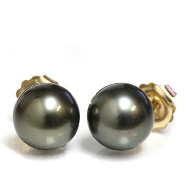 Tahitian Pearl Stud Earrings 13 MM Dark  AAA-