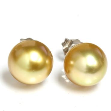 South Sea Pearl Stud Earrings 10 MM Deep Golden  AAA