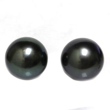 Tahitian Pearl Stud Earrings 13 MM Black  AAA-
