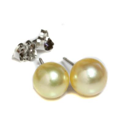 South Sea Pearl Stud Earrings 8 MM Golden AAA Flawless