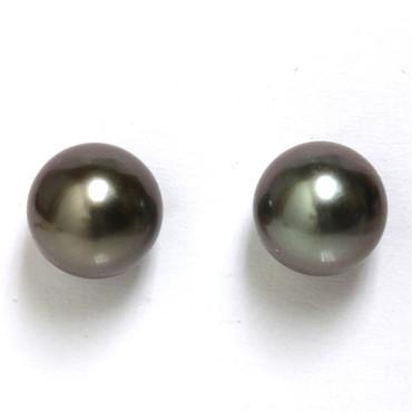 Tahitian Pearl Stud Earrings 9 MM Dark Grey / black AAA Flawless