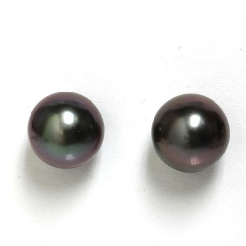 Tahitian Pearl Stud Earrings 9 MM Black Wine AAA Flawless
