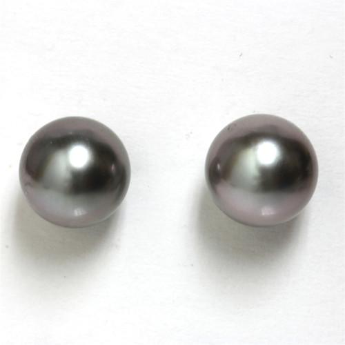 Tahitian Pearl Stud Earrings 9 MM Grey Wine AAA Flawless