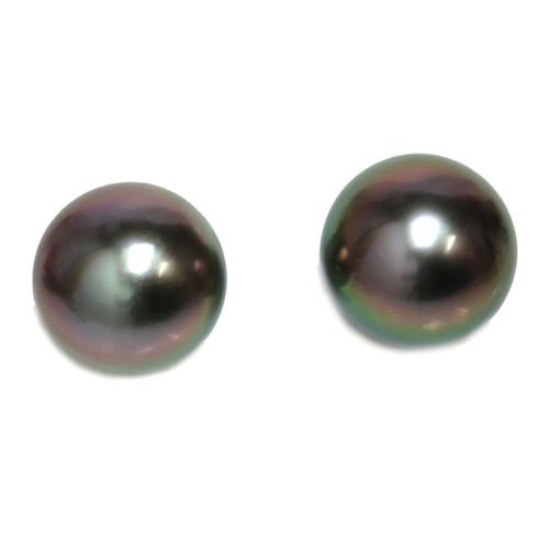 Tahitian Pearl Stud Earrings 11 MM Peacock AAA