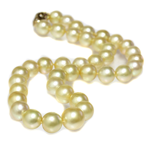 South Sea Pearl Necklace 13 - 10 MM Golden AAA