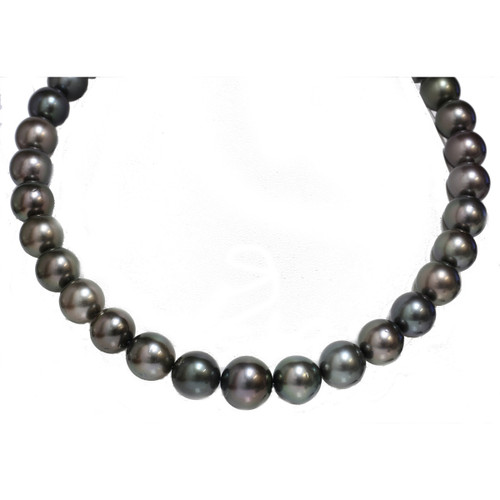 Tahitian Pearl Necklace  16 - 13 mm AAA Diamond Clasp Option