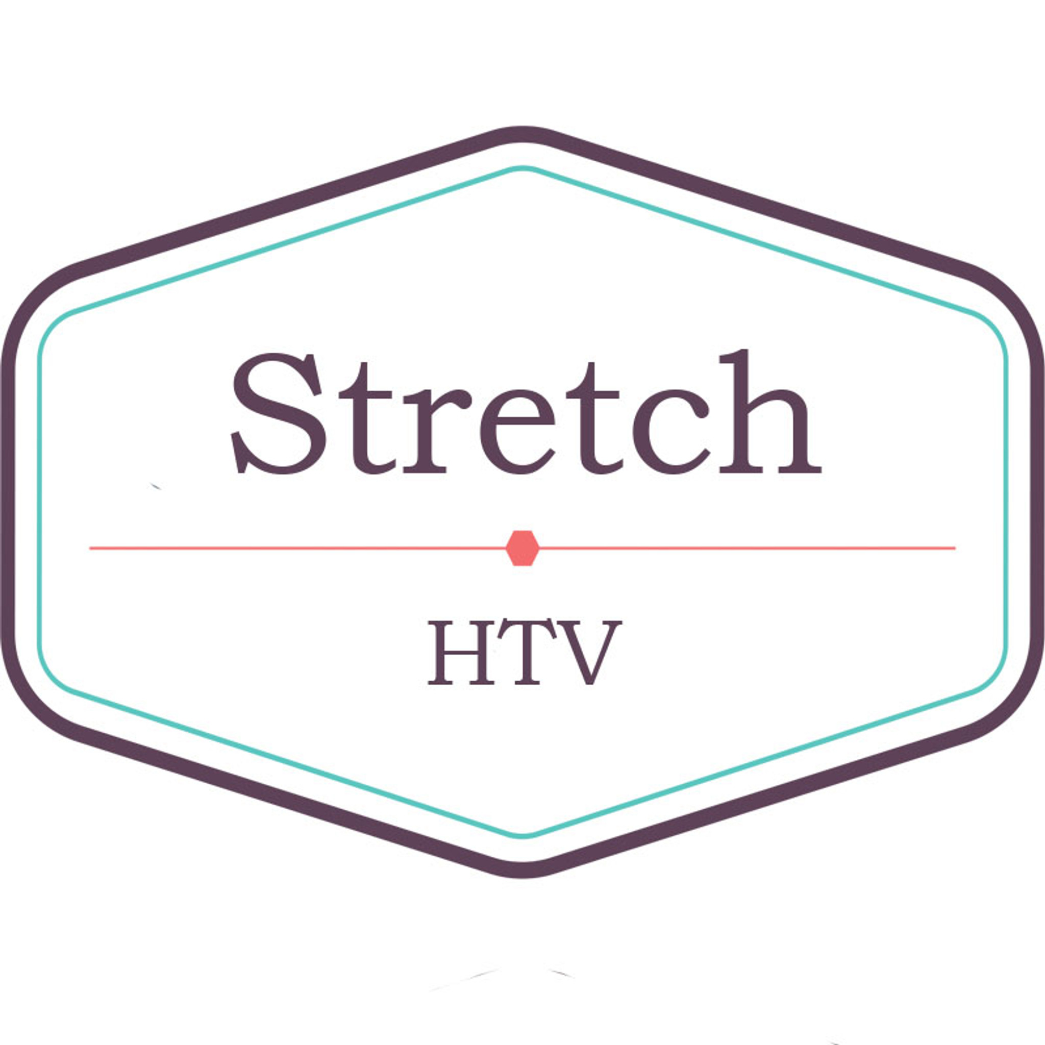 "Siser EasyWeed Stretch 15"""