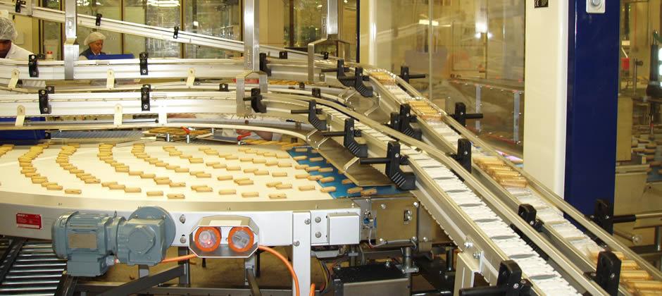 Food Conveyor System