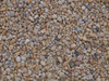 Heritage Stone Yorkshire Gold decorative gravel