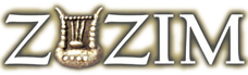 Zuzim Inc. Ancient Coins & Artifacts