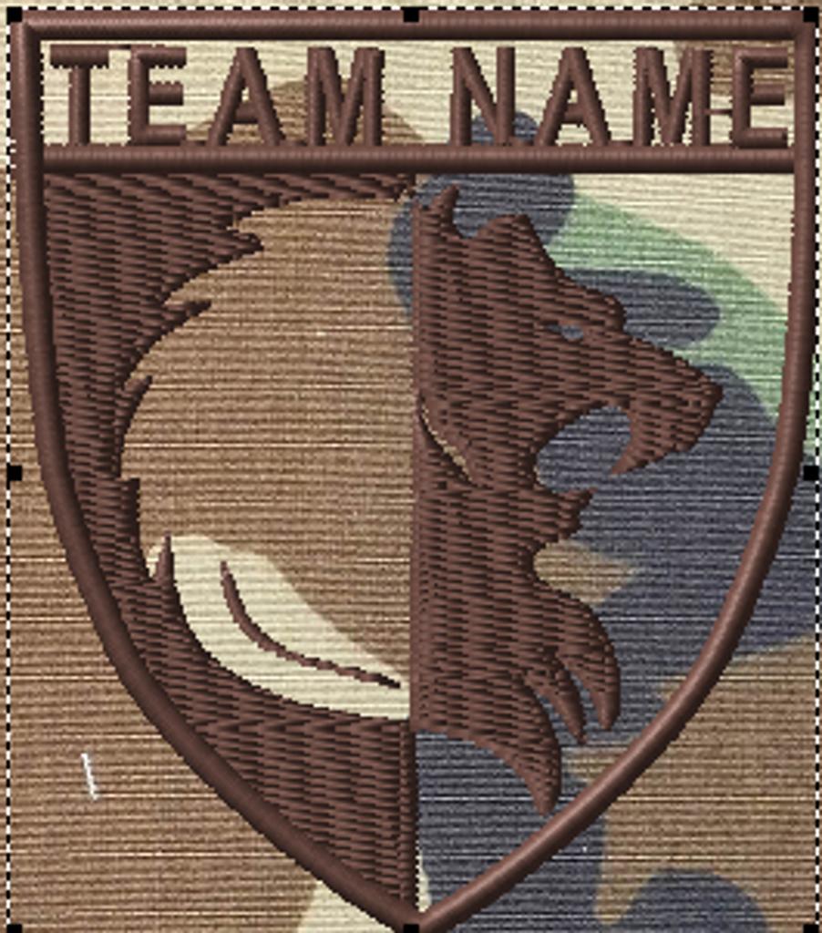 Team patches lion crest
