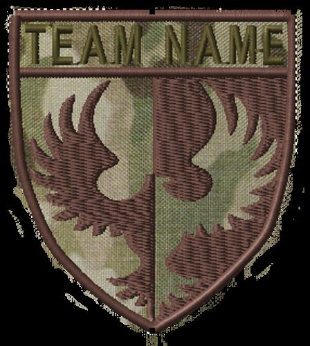 Team patches phoenix crest