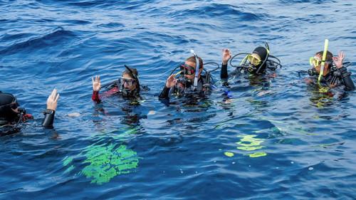 PADI Divemaster Program
