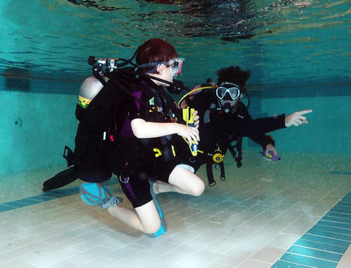 Certified Divers - Drop-in Pool fee