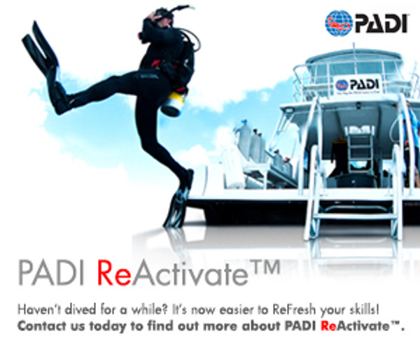 ReActivate (Scuba Refresher) - Online & Pool Session