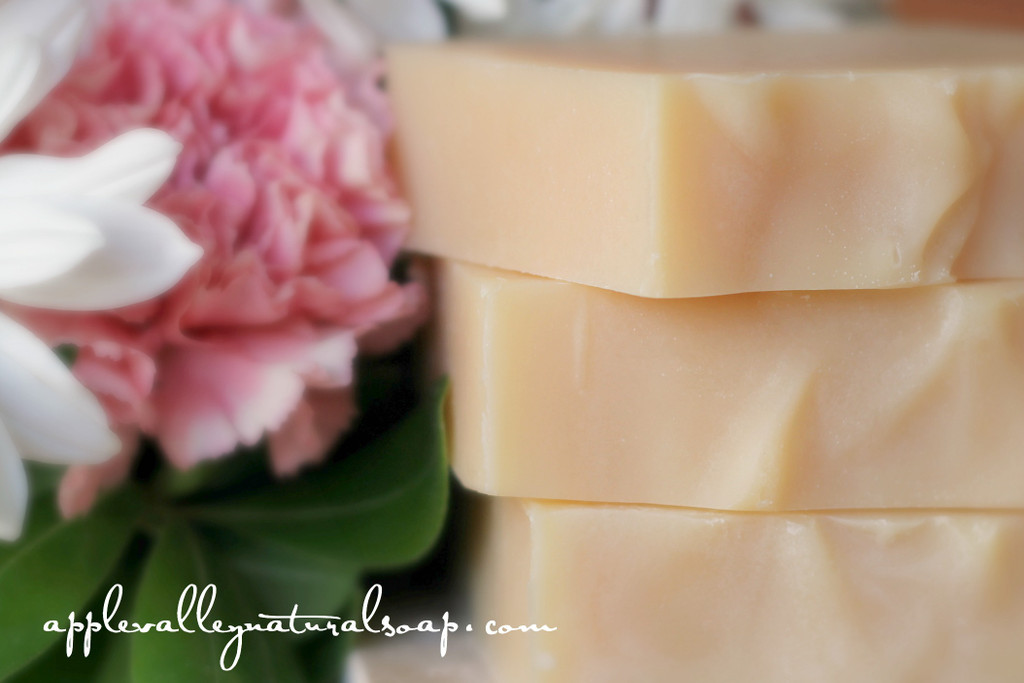 Summer Skin Saver Limited Edition Body Bar by Apple Valley Natural Soap